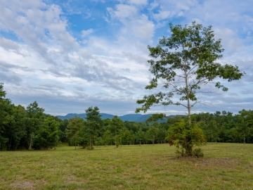 Farm-at-Cane-Creek-August-2021-25