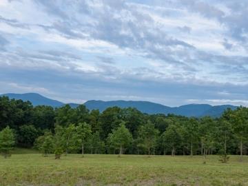 Farm-at-Cane-Creek-August-2021-26