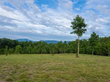 Farm-at-Cane-Creek-August-2021-27