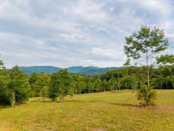 Farm-at-Cane-Creek-August-2021-9