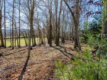 The-Farm-at-Cane-Creek-Fletcher-NC-22