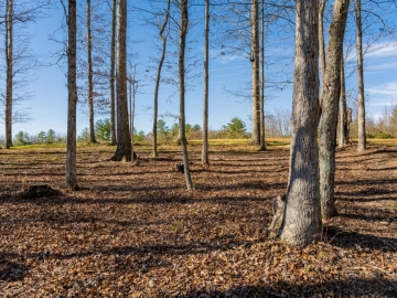 The-Farm-at-Cane-Creek-Fletcher-NC-4