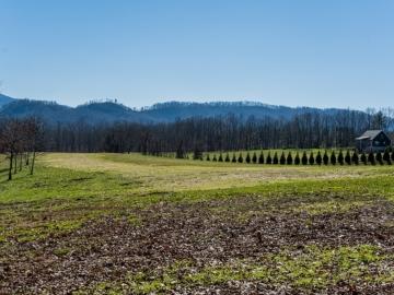 The-Farm-at-Cane-Creek-Fletcher-NC-8
