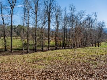 The-Farm-at-Cane-Creek-Fletcher-NC-9