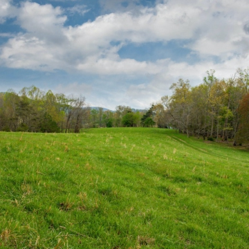 full-The-Farm-at-Cane-Creek-print-028